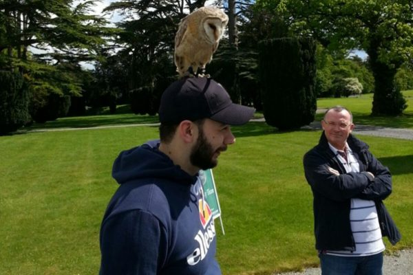 An owl standing on a delegates hat during Falconry demonstration with Orangeworks.