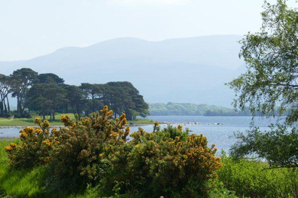 Lakeside views during Go Team Killarney
