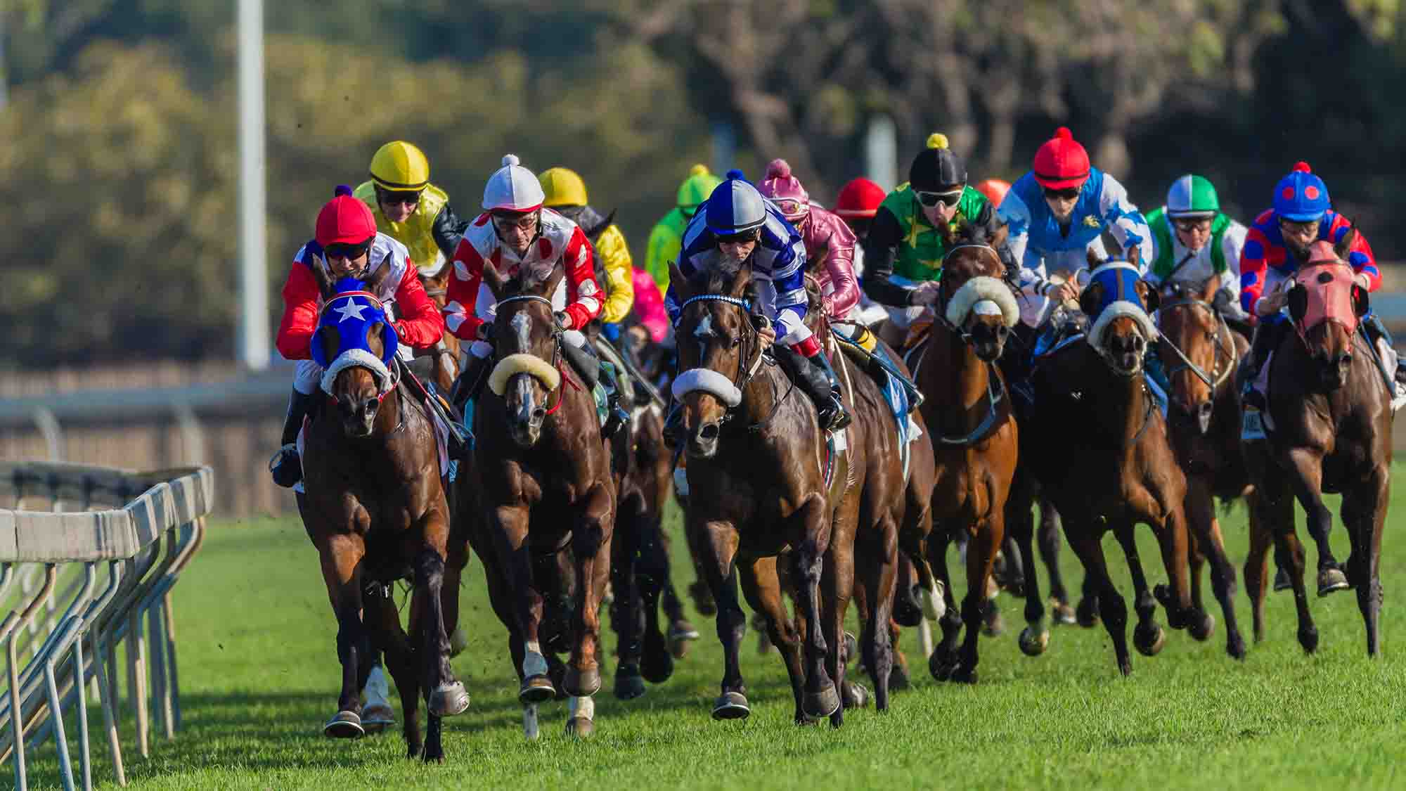 Final Furlong - Enjoy a virtual night at the Races with your remote team.